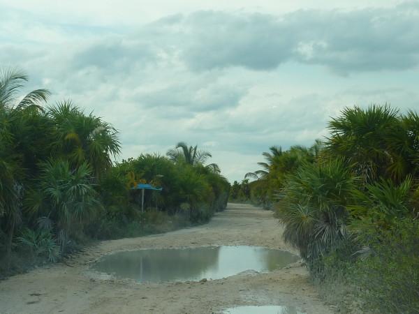 P1050837-Reserve-Sian-Ka-an.JPG