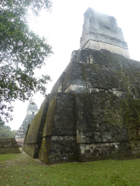 P1050966-Tikal.JPG