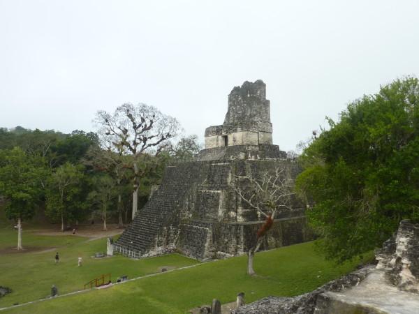 P1050976-Tikal.JPG