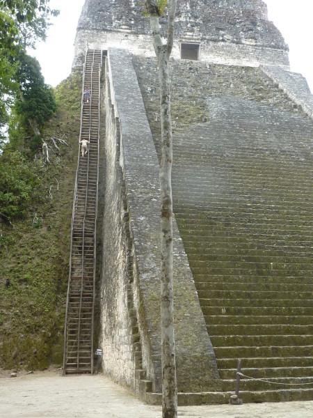 P1060026-Tikal.JPG