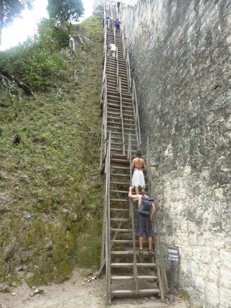 P1060035-Tikal.JPG