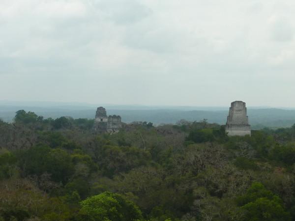 P1060056-Tikal.JPG