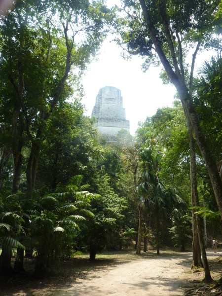 P1060067-Tikal.JPG
