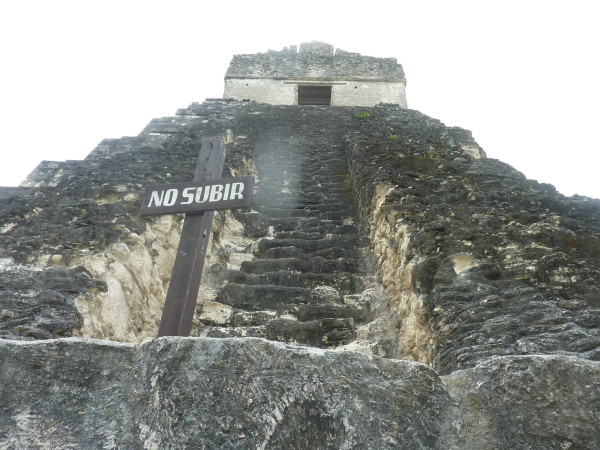 P1060081-Tikal.JPG