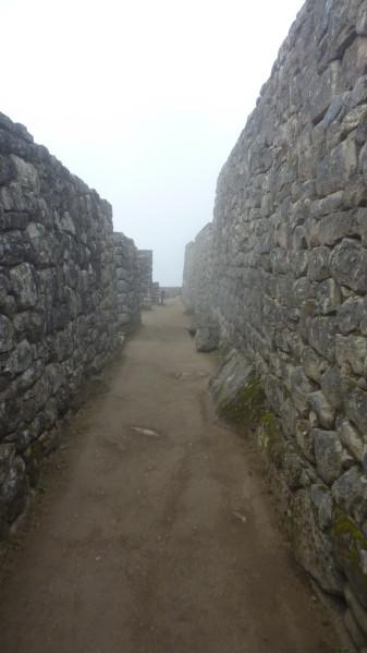 P1150736-Machu-Picchu.JPG