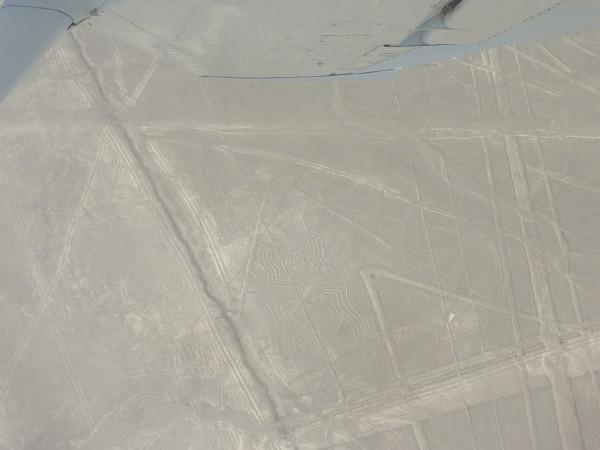 P1150940-Nazca.JPG