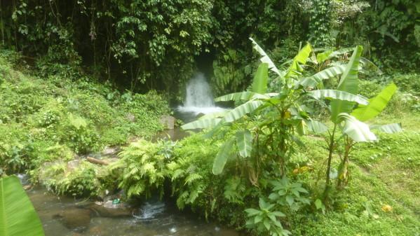 P1200351 Gunnung Kawi Bali