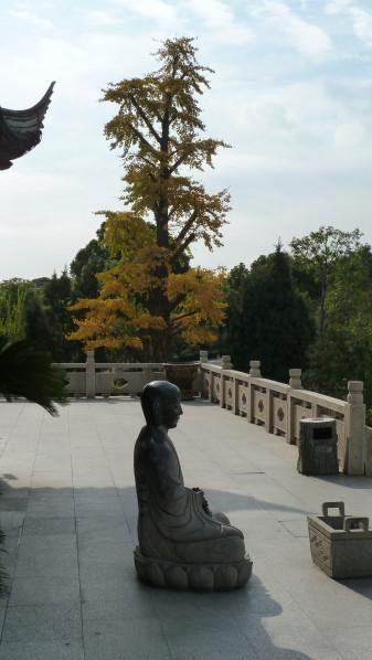 P1010884 Suzhou