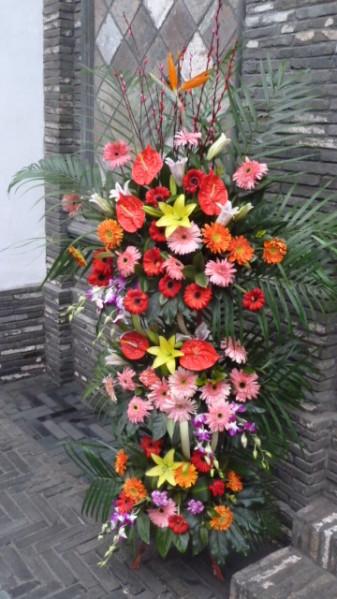 P1050840 Chengdu