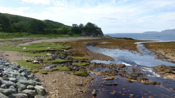 P1270119 Ile de Skye