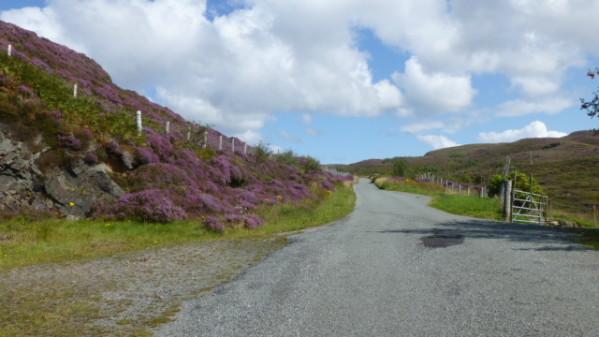 P1270134 Ile de Skye