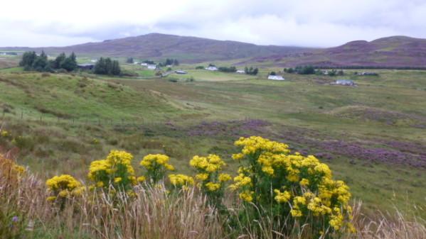 P1270183 Ile de Skye