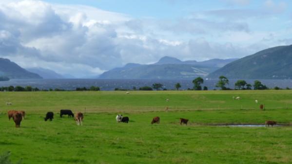 P1270226 Loch Ness