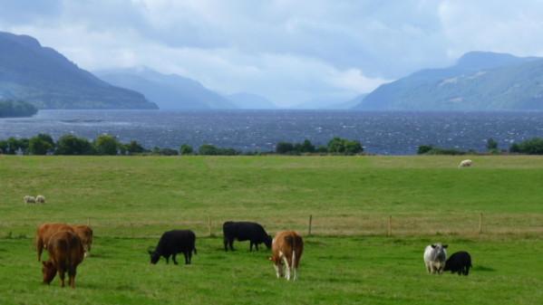 P1270227 Loch Ness