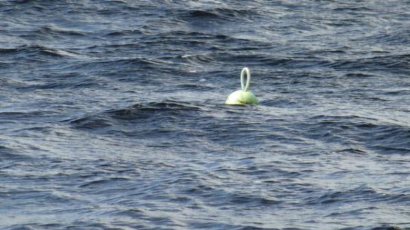 P1270237 Loch Ness