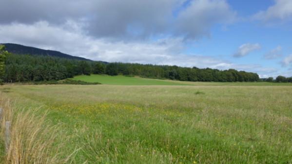 P1270246 Loch Ness