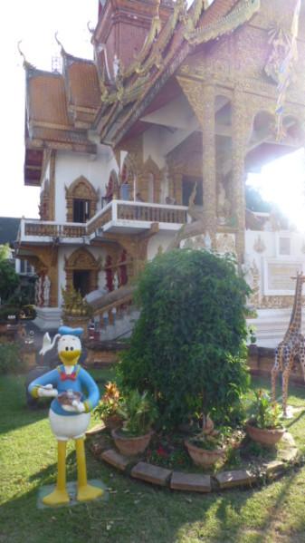 P1270633 Chiang Mai