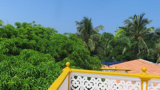 IMG_2914 Cartagena De Indias (93)