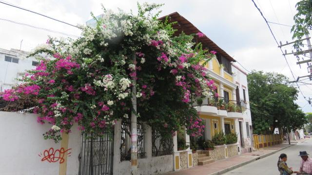 IMG_3496 Santa Marta (59)